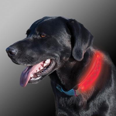 NiteIze Nite Dawg LED Dog Collar Cover