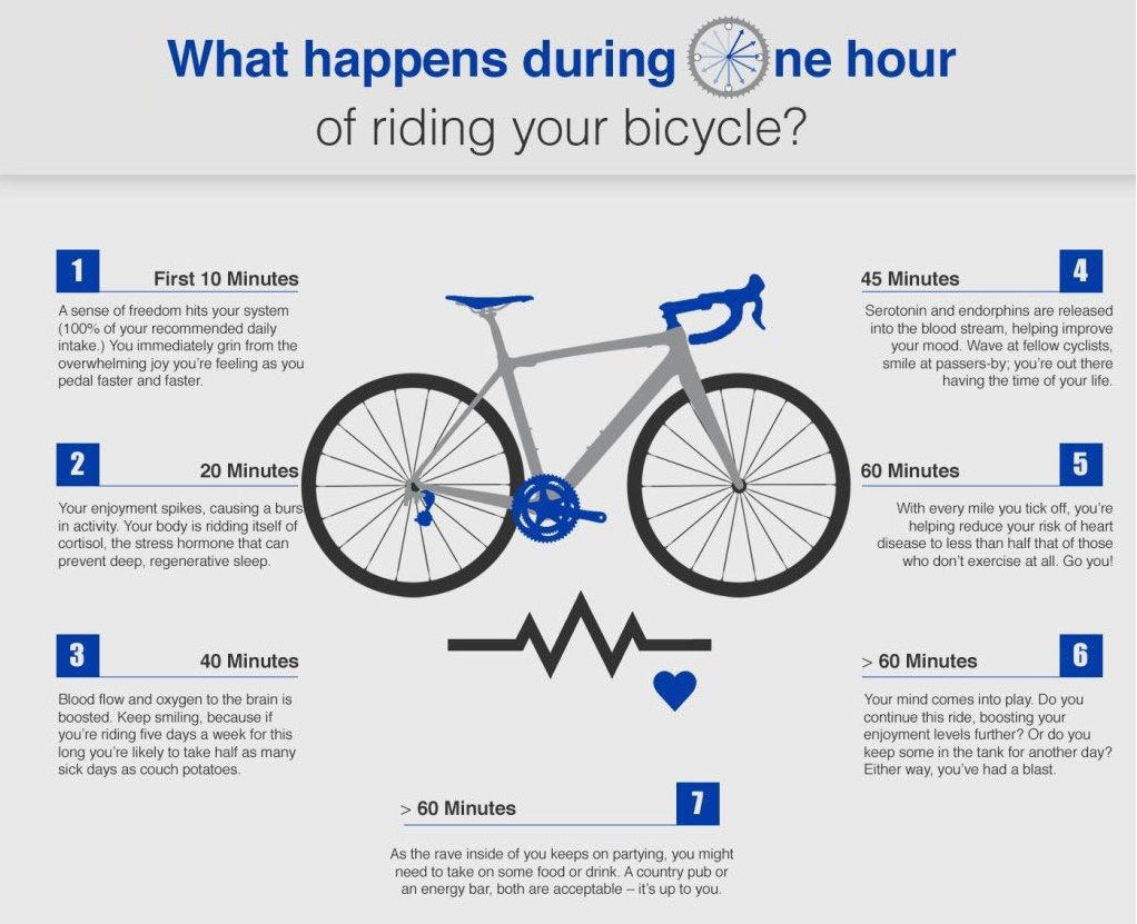 What Happens During Your Bike Ride